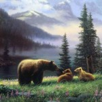 animals-bears-landscapes-nature-1636556-480x320
