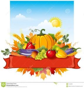 rich-harvest-16135009